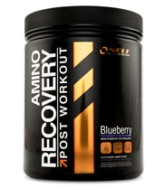 Self Omninutrition Amino Recovery